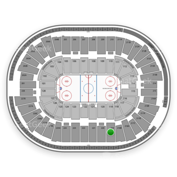 Detroit Red Wings at Joe Louis Arena Section 219 View