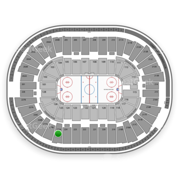 Detroit Red Wings at Joe Louis Arena 225 A View