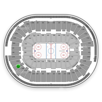 Detroit Red Wings at Joe Louis Arena 226 C View