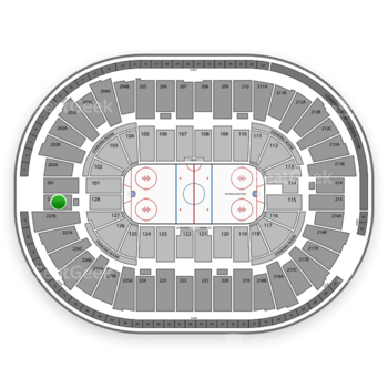 Detroit Red Wings at Joe Louis Arena Section 228 View