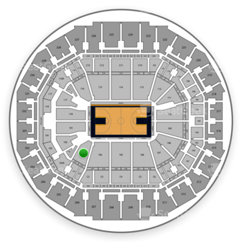Memphis Grizzlies at FedExForum Section 103 View