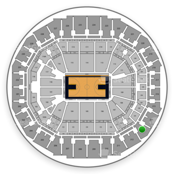 Memphis Grizzlies at FedExForum Section 213 View