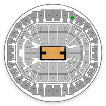 Memphis Grizzlies at FedExForum Section 222 View