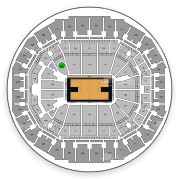 Memphis Grizzlies at FedExForum Section 116 View