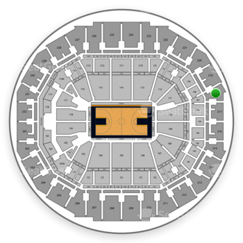 Memphis Grizzlies at FedExForum Section 218 View