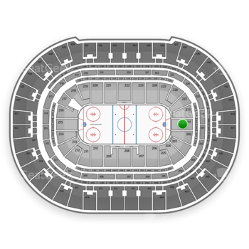 Anaheim Ducks at Honda Center Section 201 View