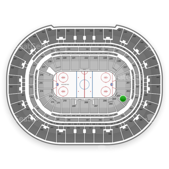 Anaheim Ducks at Honda Center Section 203 View
