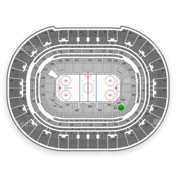 Anaheim Ducks at Honda Center Section 204 View