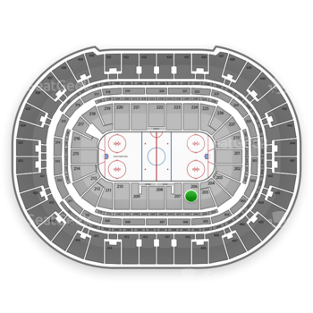 Anaheim Ducks at Honda Center Section 206 View