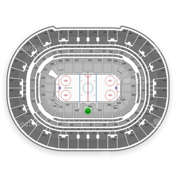 Anaheim Ducks at Honda Center Section 208 View
