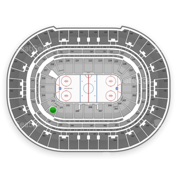 Anaheim Ducks at Honda Center Section 212 View