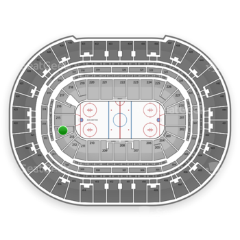 Anaheim Ducks at Honda Center Section 214 View