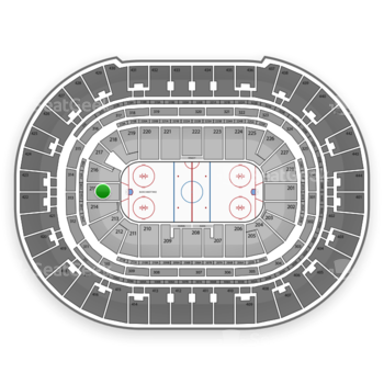 Anaheim Ducks at Honda Center Section 215 View
