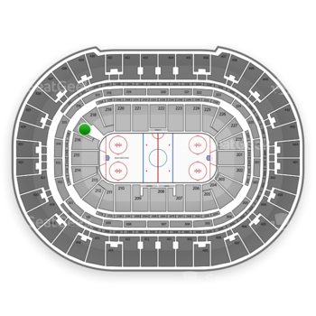 Anaheim Ducks at Honda Center Section 217 View