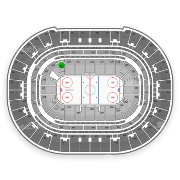 Anaheim Ducks at Honda Center Section 219 View