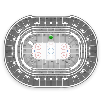 Anaheim Ducks at Honda Center Section 222 View