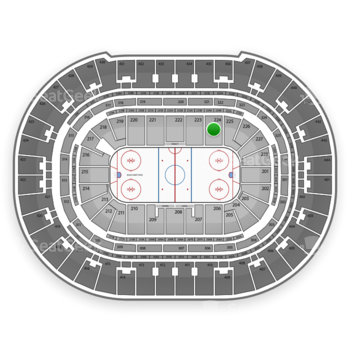 Anaheim Ducks at Honda Center Section 224 View