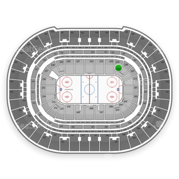 Anaheim Ducks at Honda Center Section 225 View