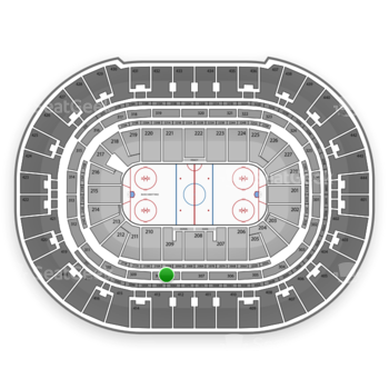 Anaheim Ducks at Honda Center Section 308 View