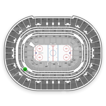 Anaheim Ducks at Honda Center Section 311 View
