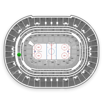 Anaheim Ducks at Honda Center Section 313 View