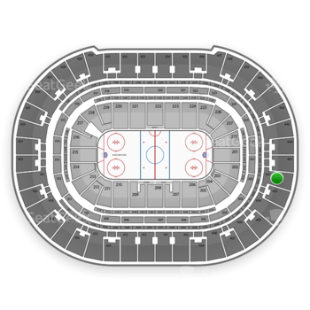 Anaheim Ducks at Honda Center Section 402 View
