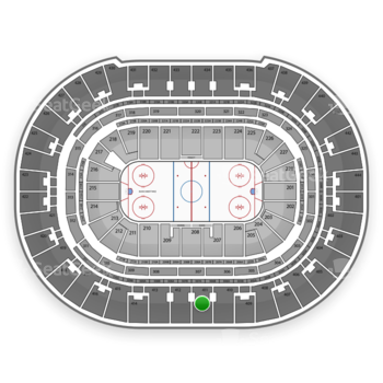 Anaheim Ducks at Honda Center Section 411 View