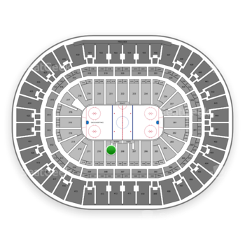 Anaheim Ducks at Honda Center Section 209 View