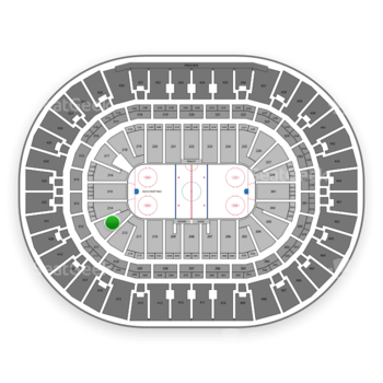 Anaheim Ducks at Honda Center Section 213 View