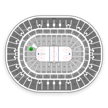 Anaheim Ducks at Honda Center Section 216 View