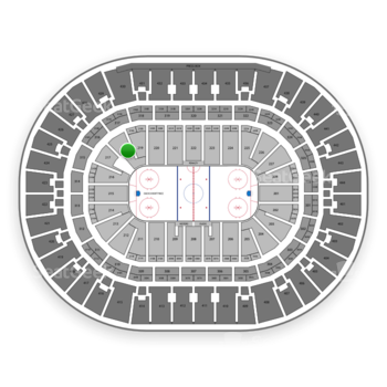 Anaheim Ducks at Honda Center Section 218 View