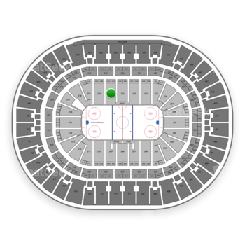 Anaheim Ducks at Honda Center Section 221 View