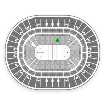 Anaheim Ducks at Honda Center Section 223 View