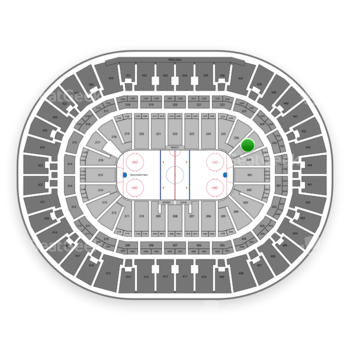 Anaheim Ducks at Honda Center Section 227 View