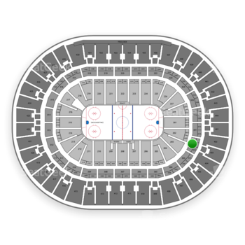 Anaheim Ducks at Honda Center Section 302 View