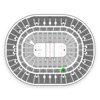 Anaheim Ducks at Honda Center Section 305 View