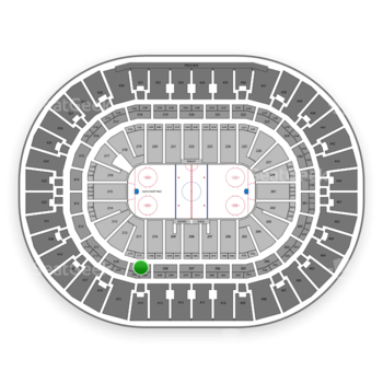 Anaheim Ducks at Honda Center Section 309 View