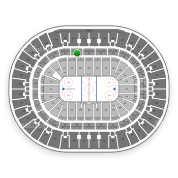 Anaheim Ducks at Honda Center Section 319 View