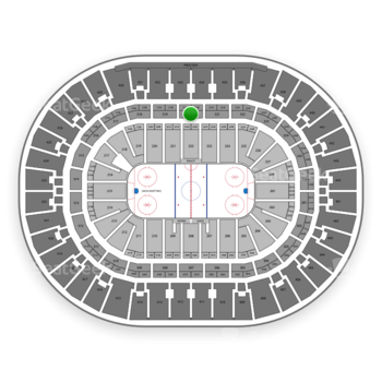 Anaheim Ducks at Honda Center Section 320 View
