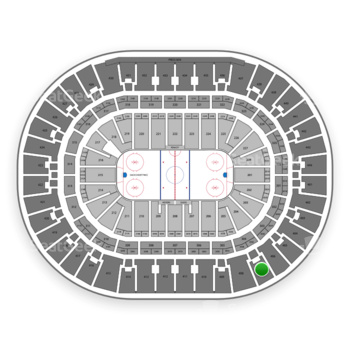 Anaheim Ducks at Honda Center Section 407 View