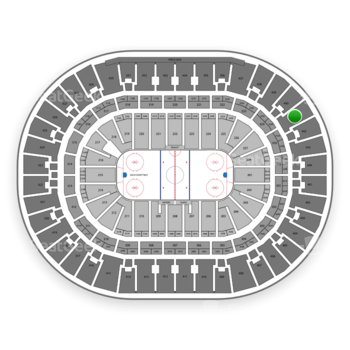 Anaheim Ducks at Honda Center Section 441 View