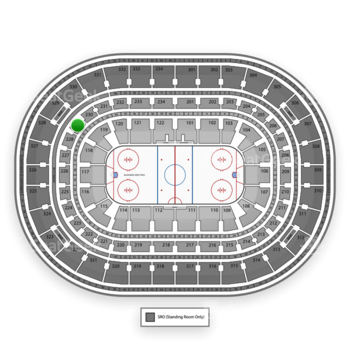 Chicago Blackhawks at United Center Section 229 View