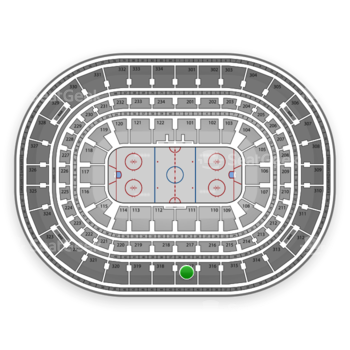 NHL at United Center Section 317 View