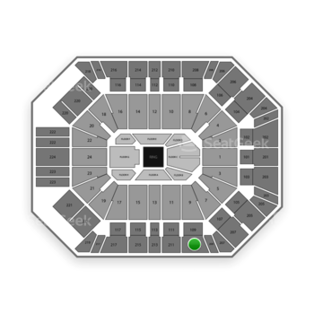 Boxing at MGM Grand Garden Arena Section 209 View