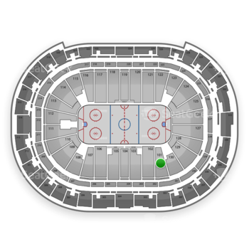 Carolina Hurricanes at PNC Arena Section 101 View