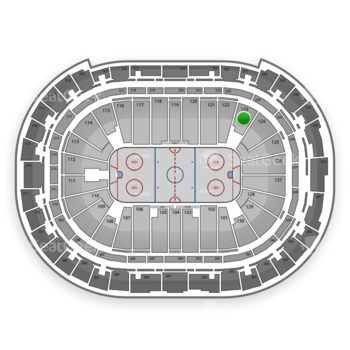 Carolina Hurricanes at PNC Arena Section 123 View