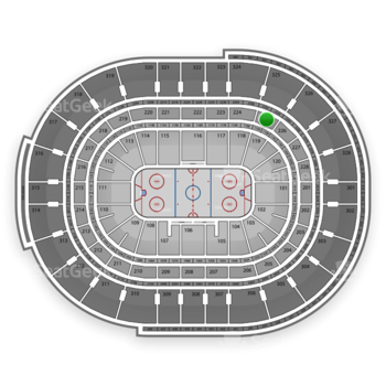 NHL at Canadian Tire Centre Section 225 View
