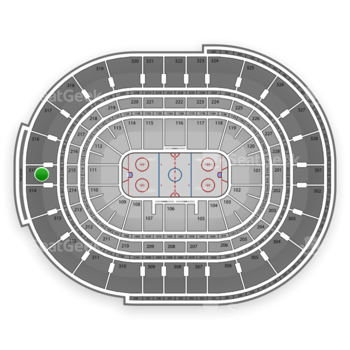 NHL at Canadian Tire Centre Section 315 View