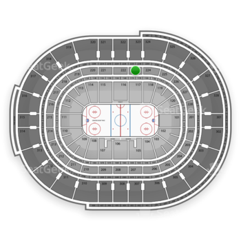 NHL at Canadian Tire Centre Section 223 View