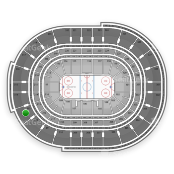 NHL at Canadian Tire Centre Section 313 View